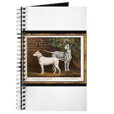 Antique Dalmatian Journal