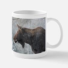 Moose looking over Mug