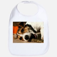 Jack Russell Terrier Puppy Chewing Stick Bib