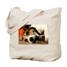 Jack Russell Terrier Puppy Chewing Stick Tote Bag