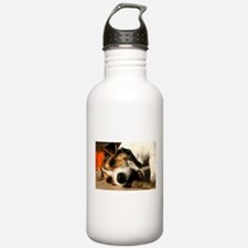 Jack Russell Terrier Puppy Chewing Stick Water Bottle