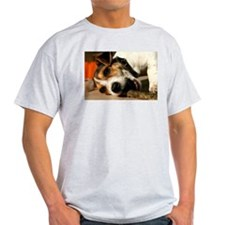 Jack Russell Terrier Puppy Chewing Stick T-Shirt