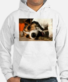 Jack Russell Terrier Puppy Chewing Stick Hoodie