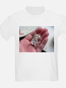 Adorable Sleeping Baby Hamster T-Shirt