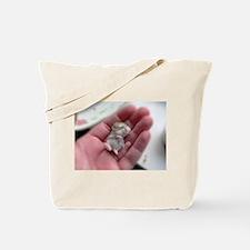 Adorable Sleeping Baby Hamster Tote Bag