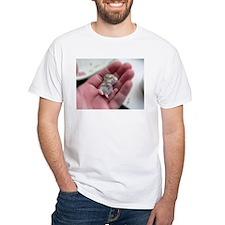 Adorable Sleeping Baby Hamster Shirt