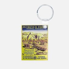Petrified Forest Keychains