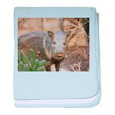 Wild Boar baby blanket