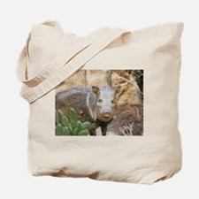 Wild Boar Tote Bag