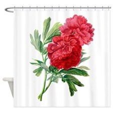 Red Peonies Drawn From Nature Shower Curtain