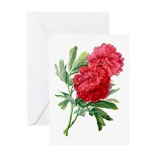 Red Peonies Drawn From Nature Greeting Card