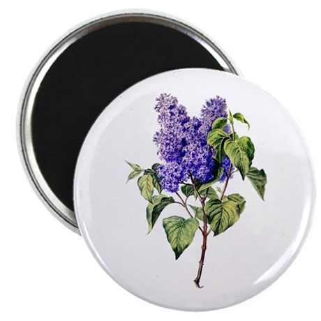 "Lilac Drawn From Nature 2.25"" Magnet (10 pack)"