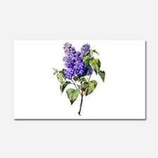 Lilac Drawn From Nature Car Magnet 20 x 12