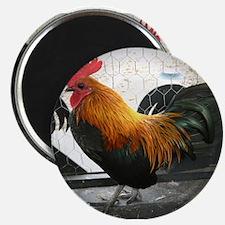 """Bantam Rooster 2.25"""" Magnet (10 pack)"""