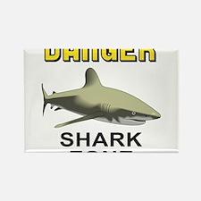 Danger Shark Zone Rectangle Magnet