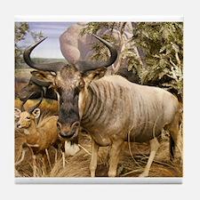 Wildebeest In The Wild Tile Coaster