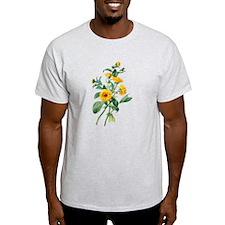 Marigold Drawn From Nature T-Shirt