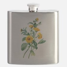 Marigold Drawn From Nature Flask
