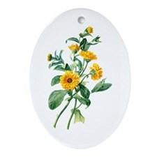 Marigold Drawn From Nature Ornament (Oval)