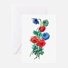 Poppy Anemone Drawn From Nature Greeting Cards (Pk