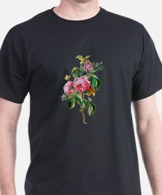 Cabbage Rose Drawn From Nature T-Shirt