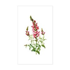 Snapdragons Drawn From Nature Decal