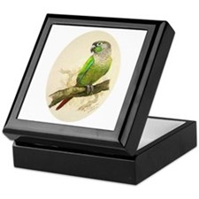 Keepsake Box - Green Cheeked Conure