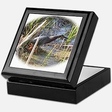 Green Heron Stalking Frogs Keepsake Box