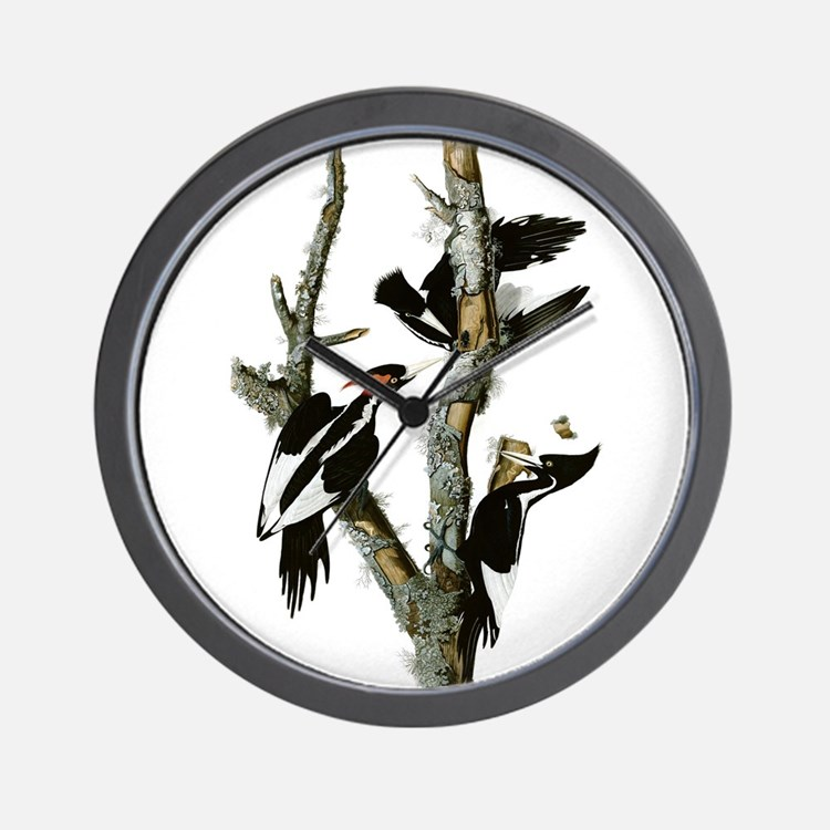 Ivory Billed Woodpeckers Wall Clock