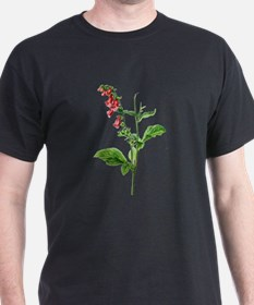Foxglove Drawn From Nature T-Shirt