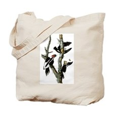 Ivory Billed Woodpeckers Tote Bag