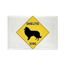 Shetland Sheepdog Crossing Sign Rectangle Magnet