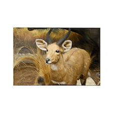 Gazelle Rectangle Magnet