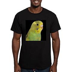 Parakeet 1 Steve Duncan T