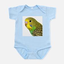 Parakeet 2 Steve Duncan Infant Bodysuit