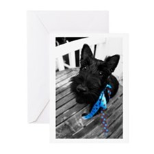 Scottie dog puppy Greeting Cards (Pk of 10)