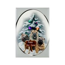 Chinese Shar-Pei Rectangle Magnet (10 pack)