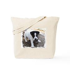 Baxter's Tote Bag