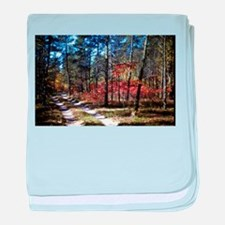 a walk down the forest path in fall baby blanket