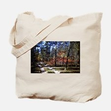a walk down the forest path in fall Tote Bag