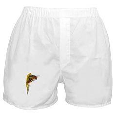 Sun Conure in flight Steve Duncan Boxer Shorts