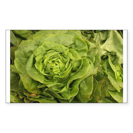 romantic ruffly lettuce Sticker (Rectangle)