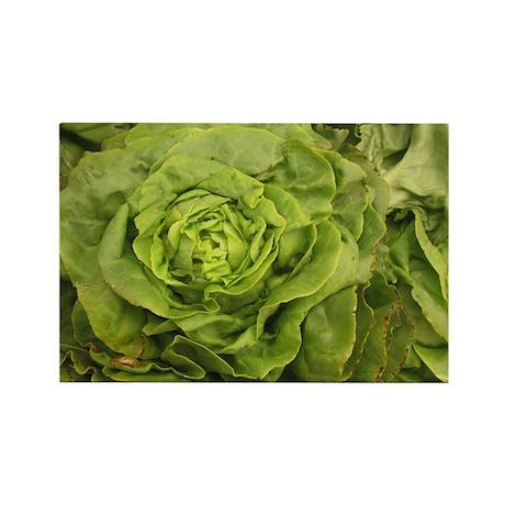 romantic ruffly lettuce Rectangle Magnet
