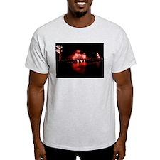 Fireworks - GG Bridge T-Shirt
