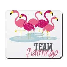 Team Flamingo Mousepad