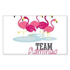 Team Flamingo Decal
