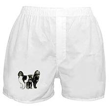 Newfoundland dog family Boxer Shorts