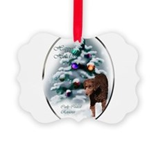 Curly Coated Retriever Picture Ornament