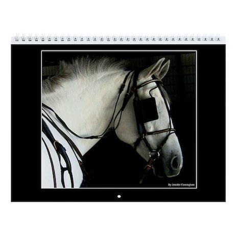 2013 SC Equine Wall Calendar