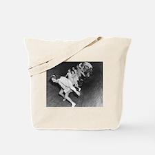 Coney Island Attractions 1826578 Tote Bag